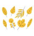 set doodle floral elements autumn vector image vector image