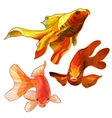 Set of Gold Fish vector image vector image