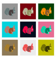 set of in flat style squirrel vector image