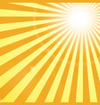 shining sun rays background vector image