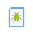 spider insect to danger symbol inside paper vector image vector image