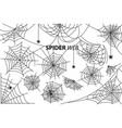 spider web collection of on white vector image