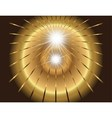 Two star burst ray with lens flare golden vector image vector image