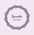 beautiful lavender flowers wreath vector image