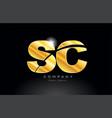 combination letter sc s c gold golden alphabet vector image vector image