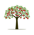 green spring tree with leaves and red apple vector image vector image