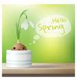 hello spring background with snowdrop flower vector image