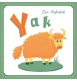 Letter Y - Yak vector image vector image