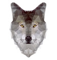 Wolf triangle vector image