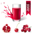 Juice in glass and fruits icons vector image
