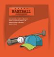 baseball championship game vector image