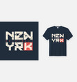 new york textured t-shirt and apparel design vector image vector image