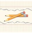 Pair of pencils vector image vector image