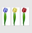 realistic tulip three colors vector image vector image