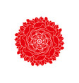 red rose flower logo organic plant summer spring vector image vector image