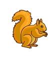 Red Squirrel cartoon drawing vector image