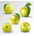 yellow apple collection set fruits and leaf vector image vector image