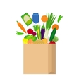 Paper bag with fresh food vector image