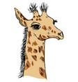 cute giraffe cub vector image vector image