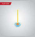 isolated besom flat icon broomstick vector image vector image