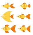 Set of golden fishes vector image vector image