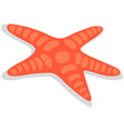 starfish isolated on white background vector image vector image