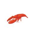 sea food crawfish icon isolat vector image