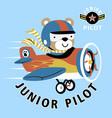 bear junior pilot on plane cartoon