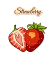 Colorful Strawberry Isolated On White vector image vector image