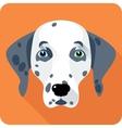 dog Dalmatian icon flat design vector image