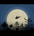 night sky with moon a moth vector image