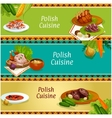 Polish cuisine meat and vegetable dish banner set vector image vector image