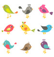 set colorful birds vector image