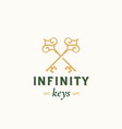 vintage keys with infinity swirls abstract vector image vector image