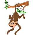 cartoon monkey hanging on the tree branch with his vector image vector image