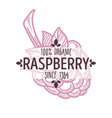 raspberry isolated icon with lettering berry vector image