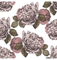 seamless ornament with hand drawn roses vector image vector image