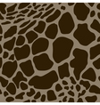 seamless pattern with giraffe skins vector image vector image