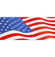 usa flag national symbol vector image vector image