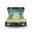 open briefcase full of money vector image