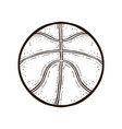 basketball ball isolated coloring book vector image