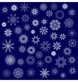 Different Winter Snowflakes vector image vector image