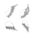 four outline wings vector image vector image