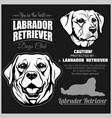 labrador retriever dog - set on black vector image vector image