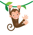 little funny monkey vector image vector image