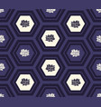 monochrome honeycomb or hexagons and lotus flowers vector image