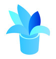 office plant pot icon isometric style vector image vector image