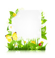 Paper With Flowers Leaves And Ladybug vector image vector image