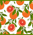 seamless pattern orange fruits with flowers vector image vector image