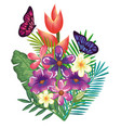 tropical and exotics flowers with butterflies vector image